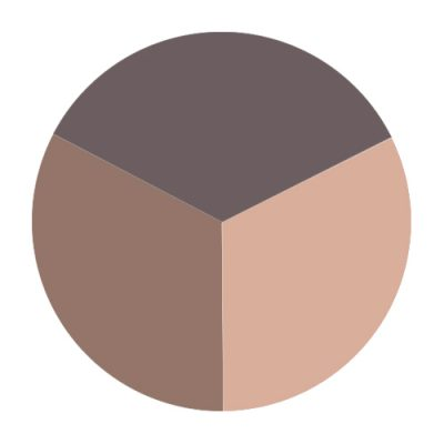 Triple Eye Shadow - Brown Sugar
