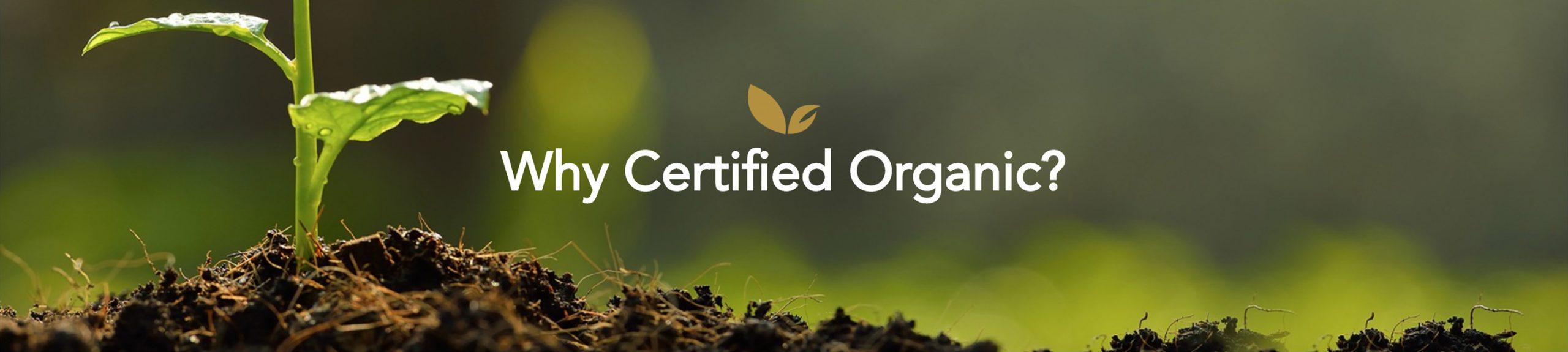 INIKA Certified Organic